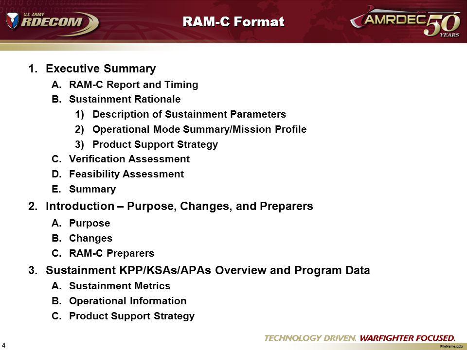 RAM-C Format Executive Summary