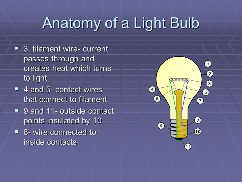 Anatomy of a Light Bulb 3. filament wire- current passes through and creates heat which turns to light.