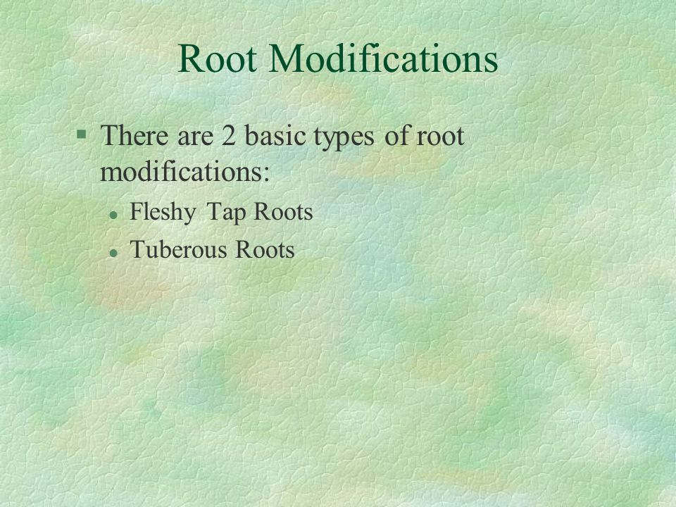 Root Modifications There are 2 basic types of root modifications: