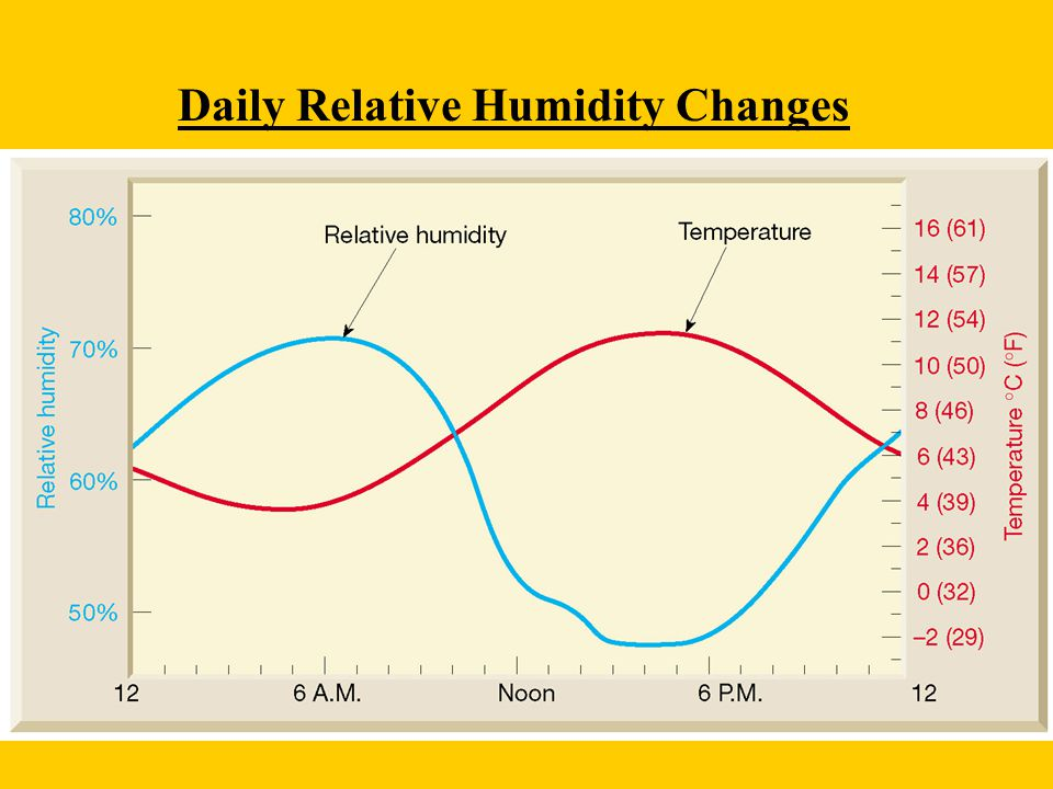 Daily Relative Humidity Changes