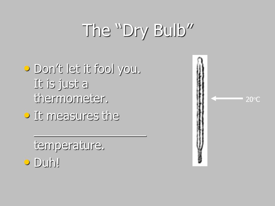 The Dry Bulb Don't let it fool you. It is just a thermometer.