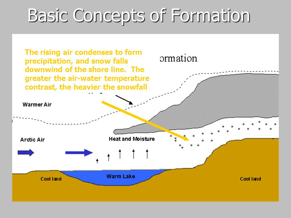 Basic Concepts of Formation