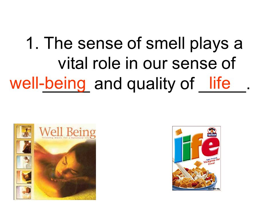 1. The sense of smell plays a vital role in our sense of _____ and quality of _____.