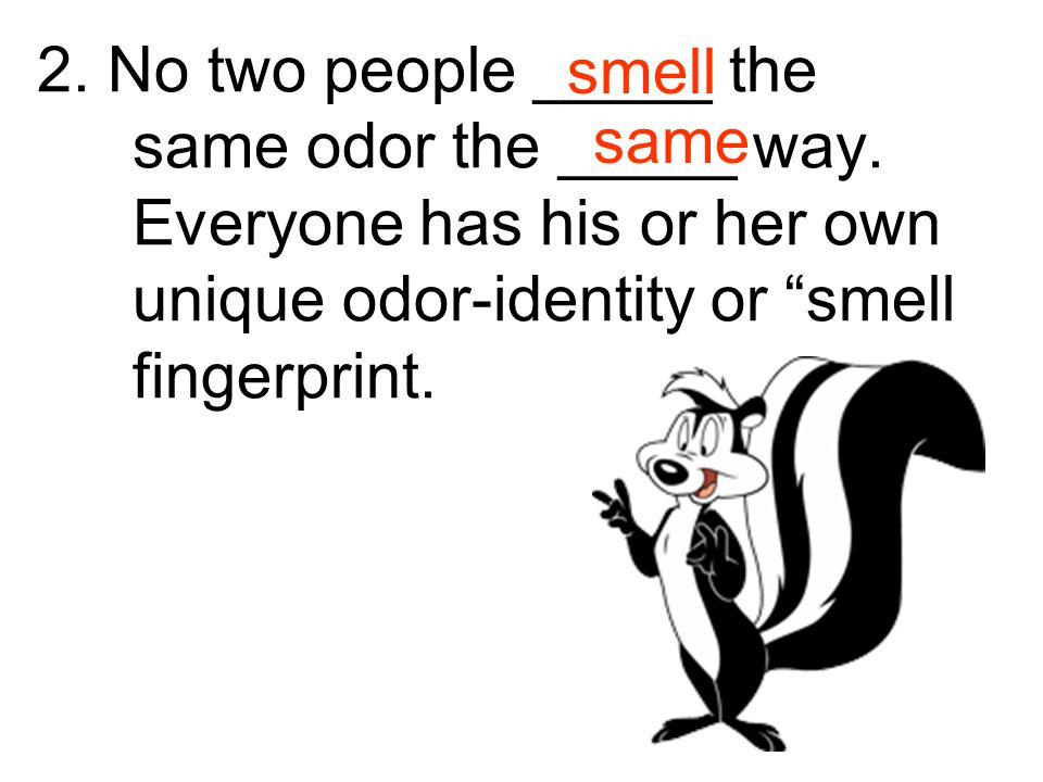 2. No two people _____ the same odor the _____ way