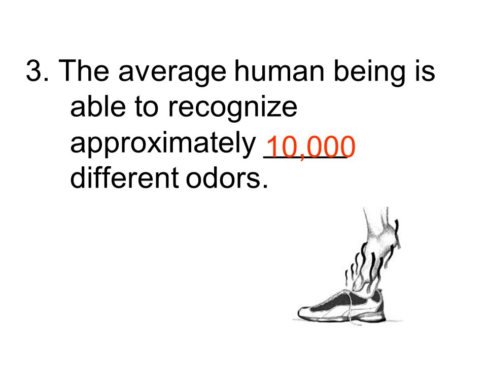 3. The average human being is able to recognize approximately _____ different odors.