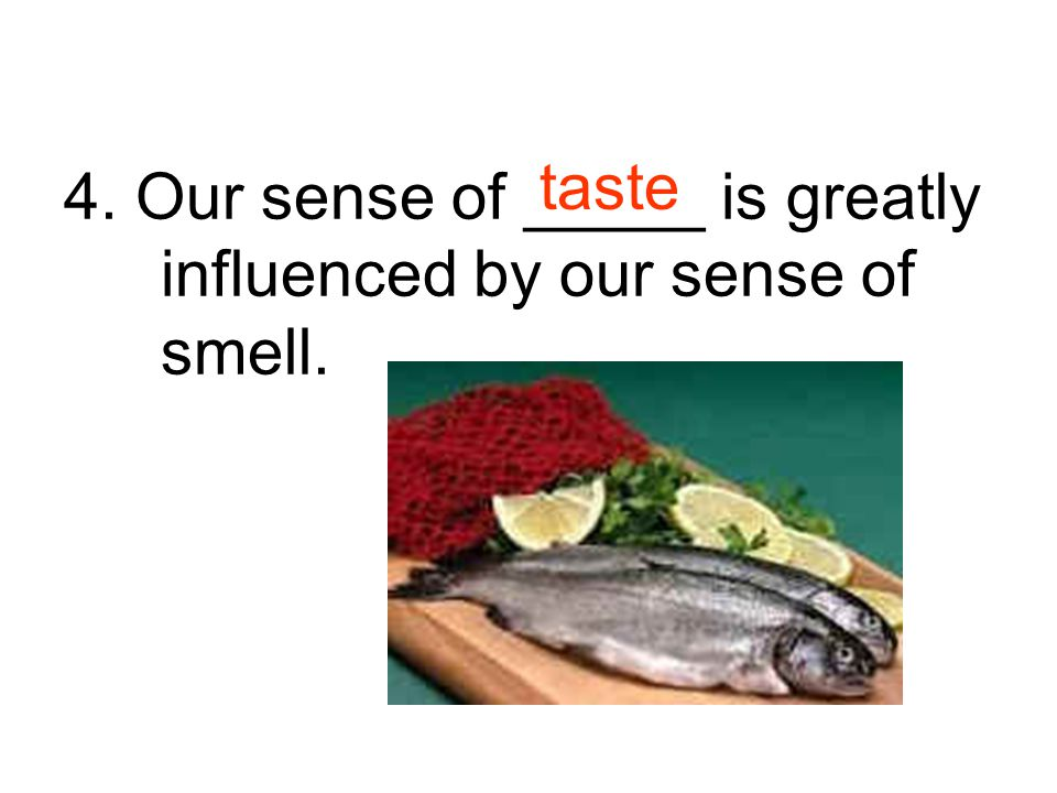 4. Our sense of _____ is greatly influenced by our sense of smell.