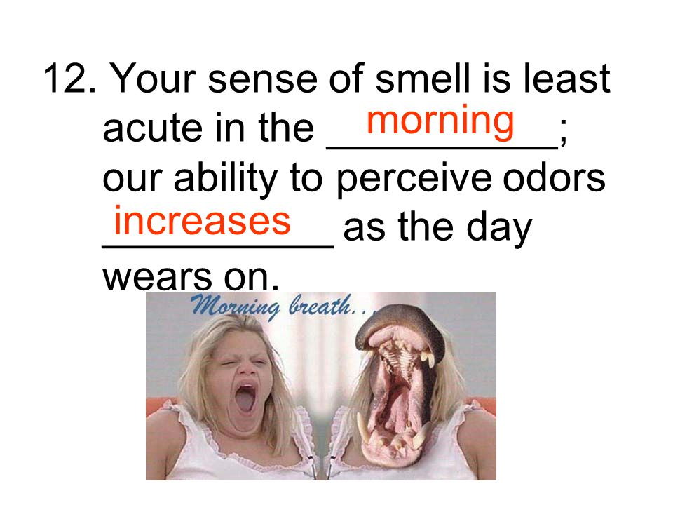 12. Your sense of smell is least acute in the __________; our ability to perceive odors __________ as the day wears on.