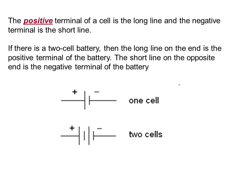 The positive terminal of a cell is the long line and the negative terminal is the short line.