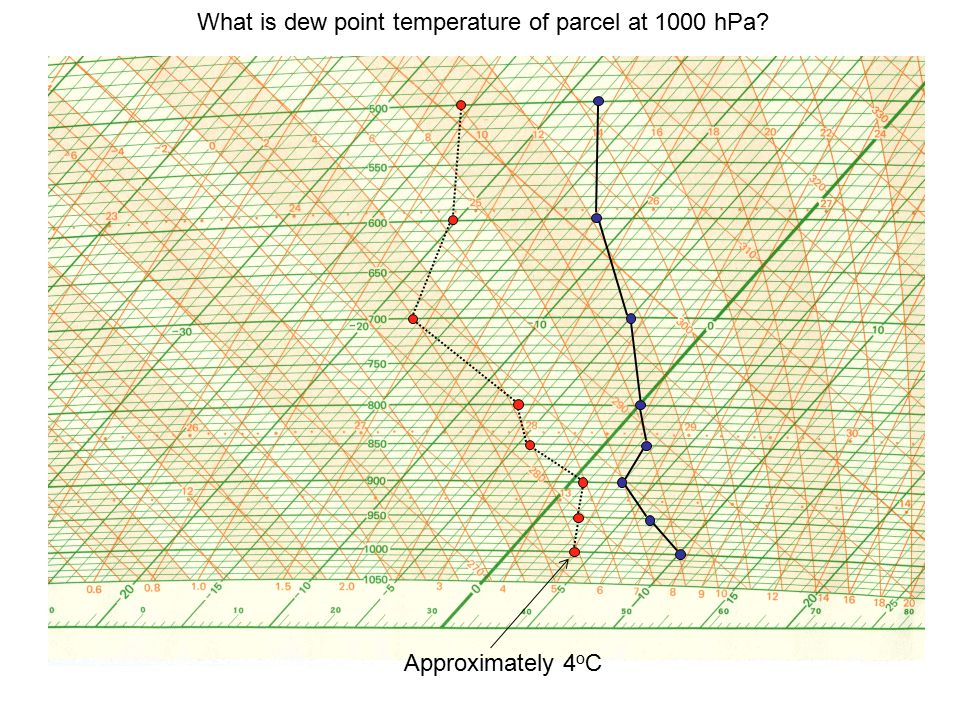 What is dew point temperature of parcel at 1000 hPa