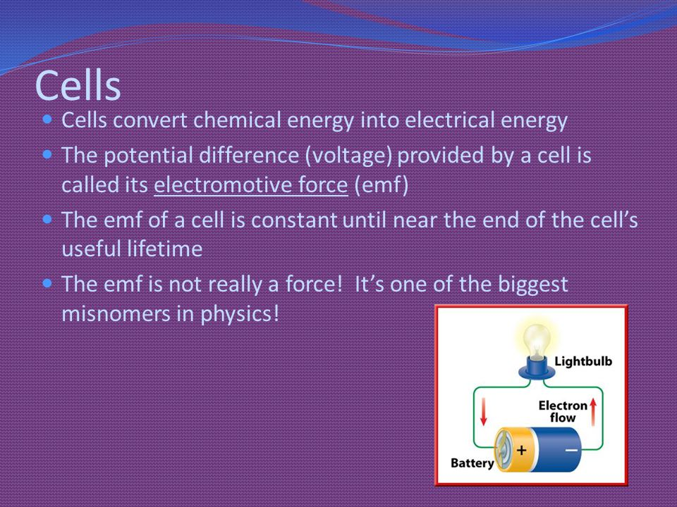 Cells Cells convert chemical energy into electrical energy