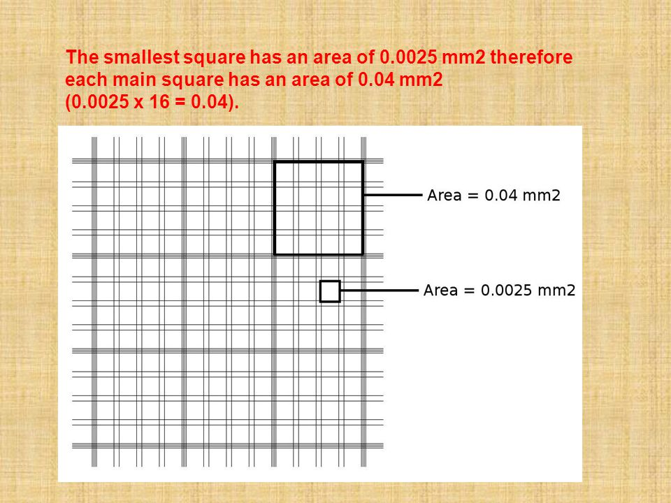 The smallest square has an area of 0