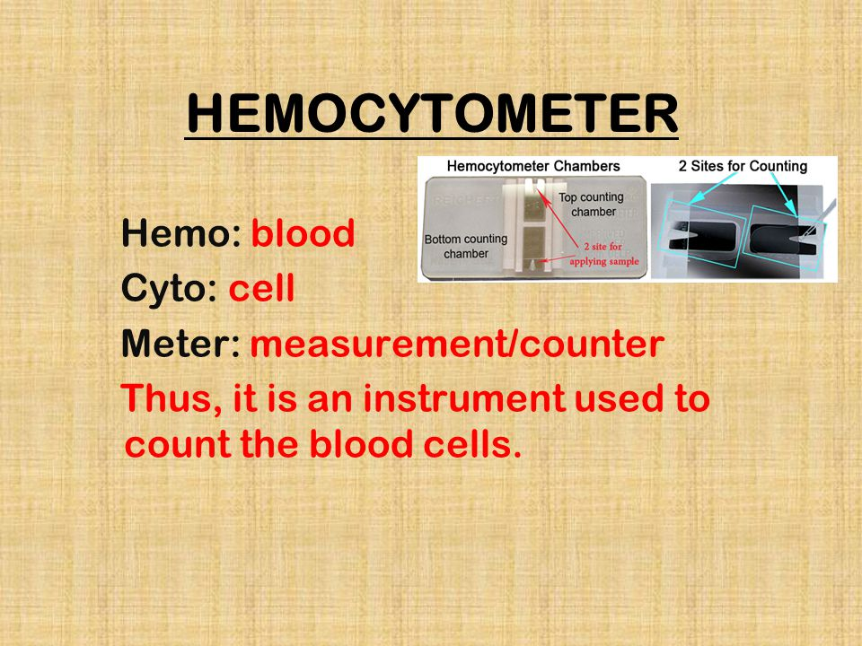 HEMOCYTOMETER Hemo: blood Cyto: cell Meter: measurement/counter