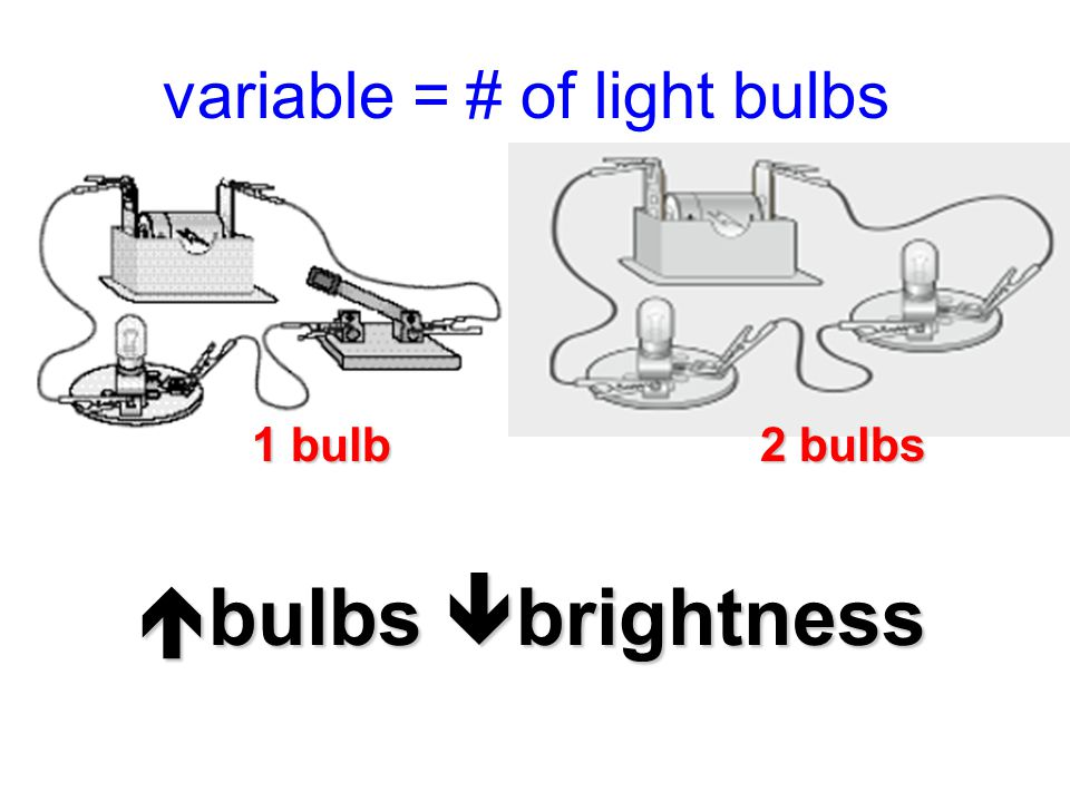 variable = # of light bulbs