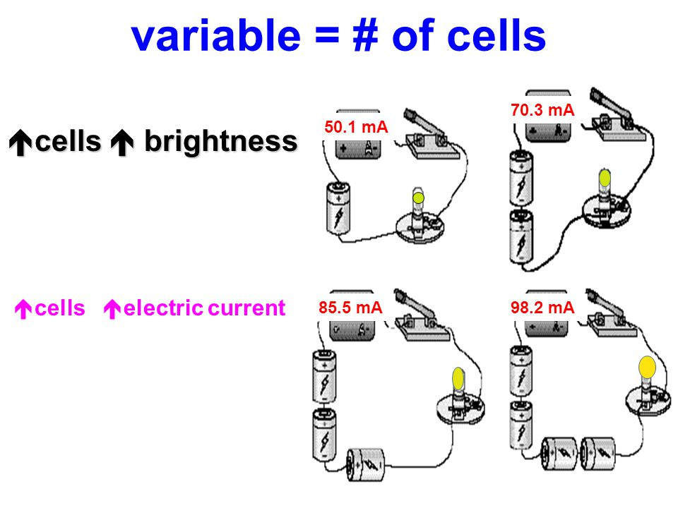 cells  brightness cells electric current