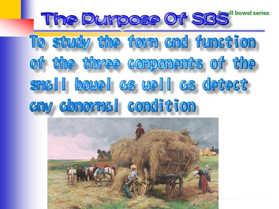 做SBS的目的,主要是要看整個小腸的形狀,結構有無異常功能