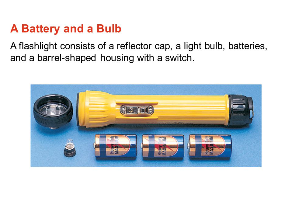 A Battery and a Bulb A flashlight consists of a reflector cap, a light bulb, batteries, and a barrel-shaped housing with a switch.