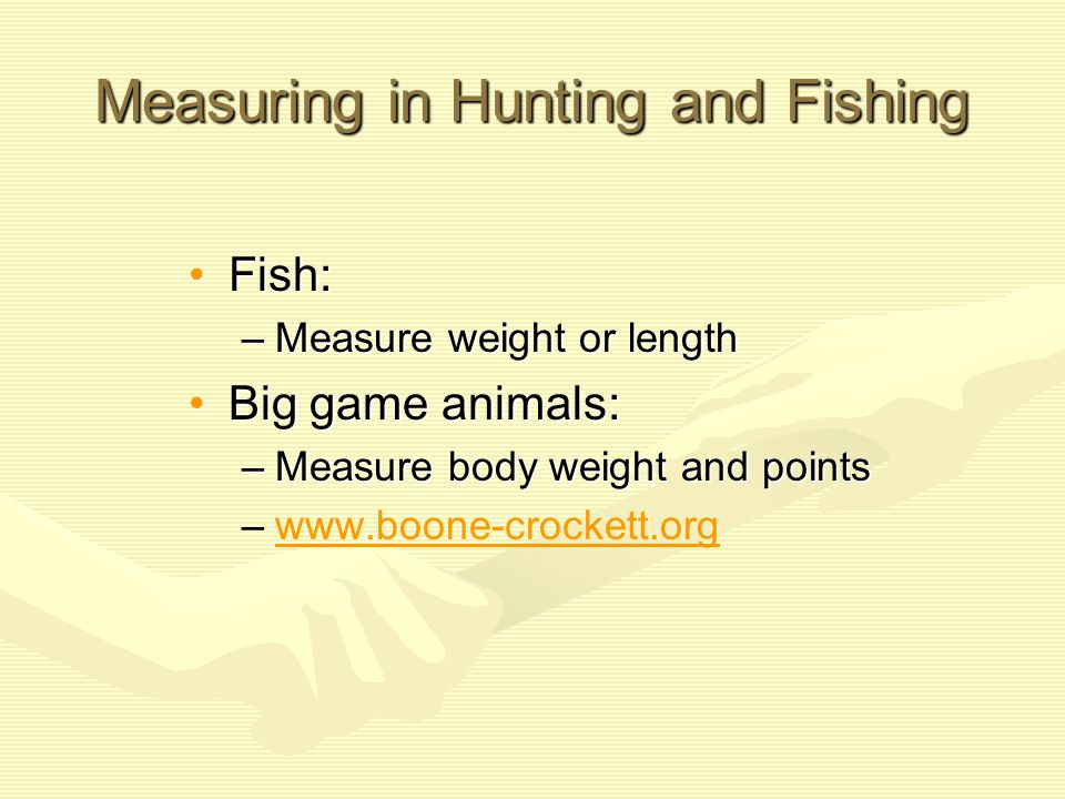 Measuring in Hunting and Fishing