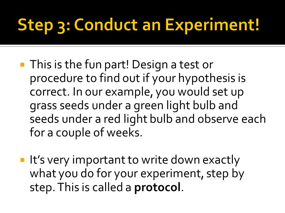 Step 3: Conduct an Experiment!