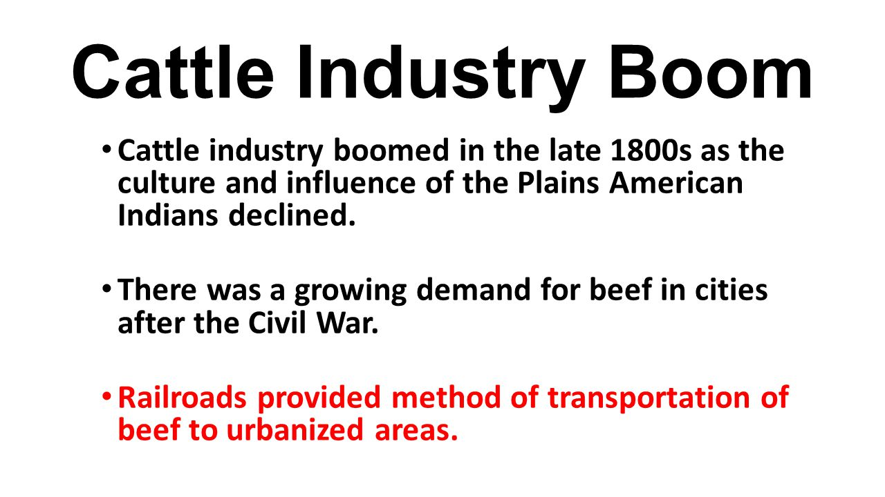 Cattle Industry Boom Cattle industry boomed in the late 1800s as the culture and influence of the Plains American Indians declined.