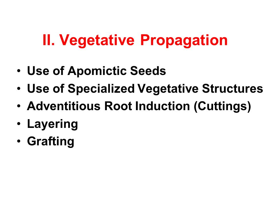 II. Vegetative Propagation