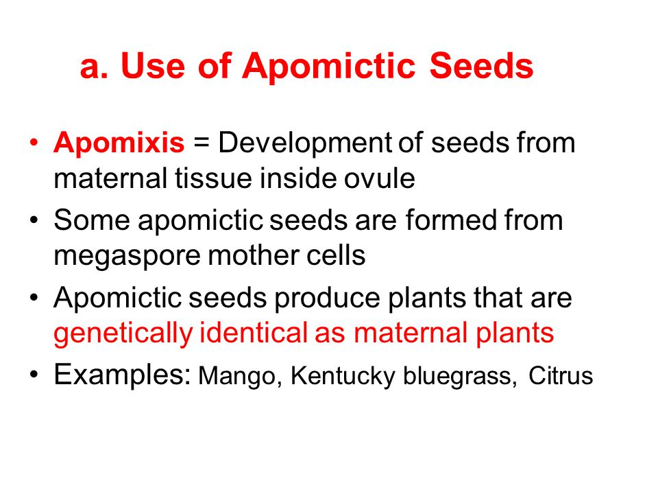 a. Use of Apomictic Seeds