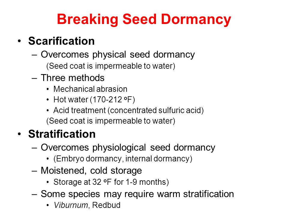 Breaking Seed Dormancy