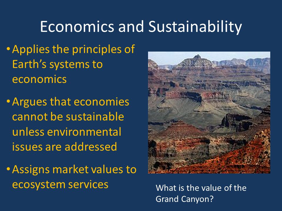 Economics and Sustainability