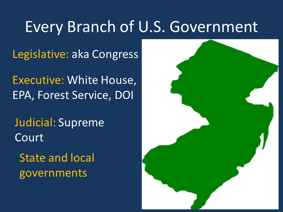 Every Branch of U.S. Government