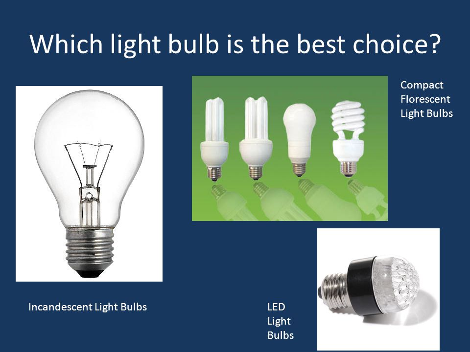 Which light bulb is the best choice