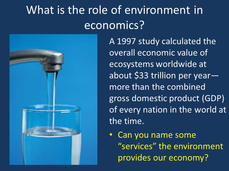What is the role of environment in economics