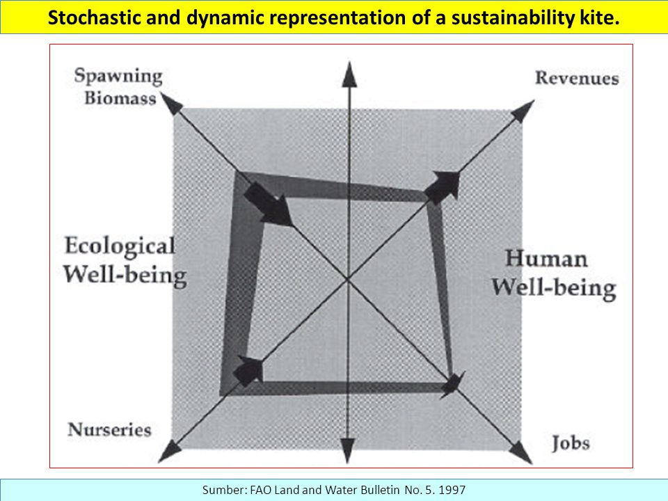 Stochastic and dynamic representation of a sustainability kite.