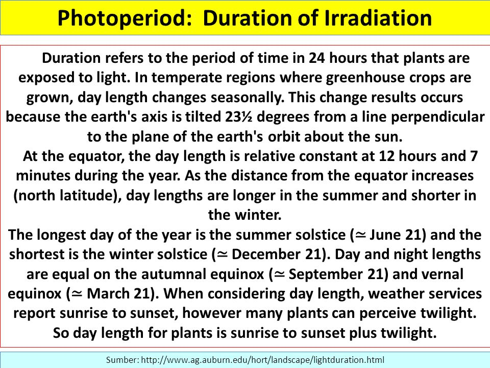 Photoperiod: Duration of Irradiation