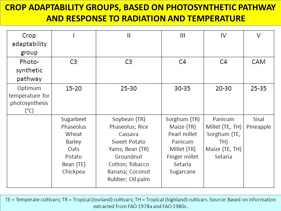 CROP ADAPTABILITY GROUPS, BASED ON PHOTOSYNTHETIC PATHWAY AND RESPONSE TO RADIATION AND TEMPERATURE