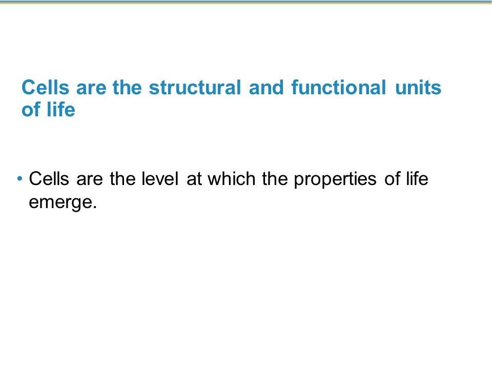 Cells are the structural and functional units of life