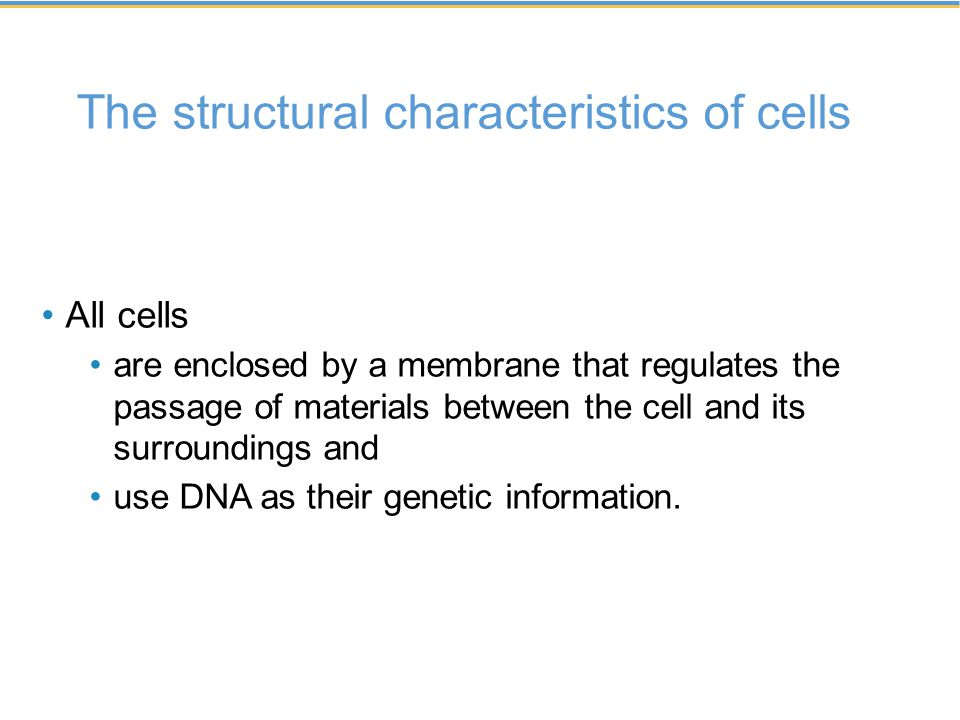 The structural characteristics of cells