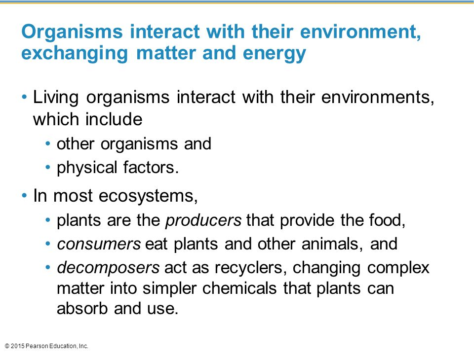 Organisms interact with their environment, exchanging matter and energy