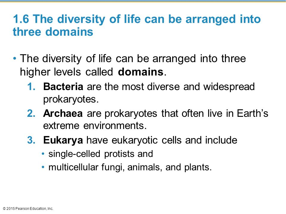 1.6 The diversity of life can be arranged into three domains