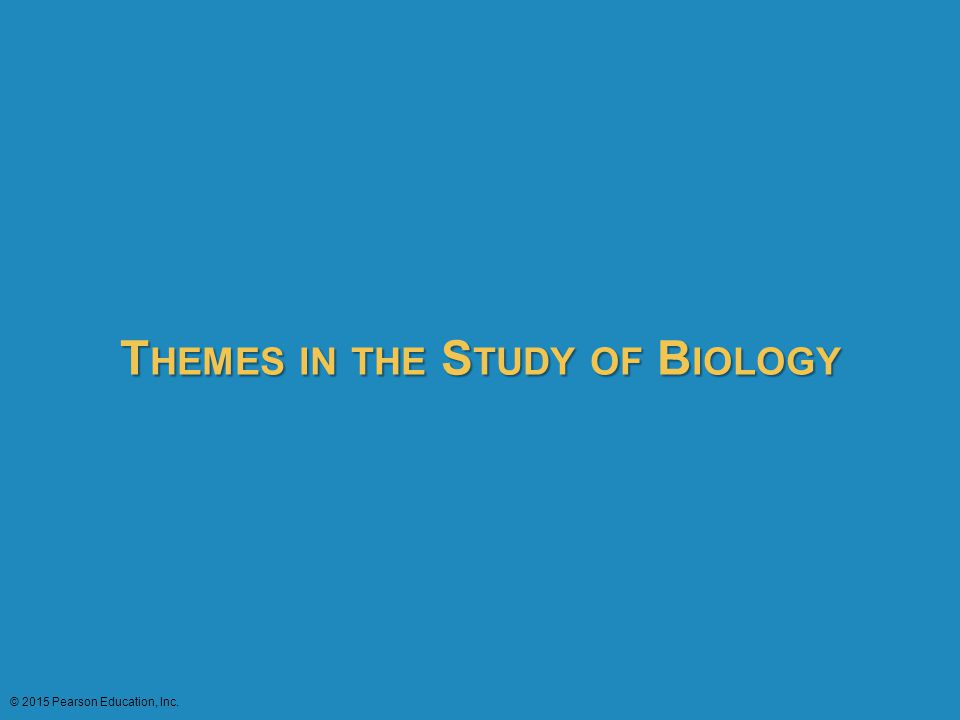 THEMES IN THE STUDY OF BIOLOGY