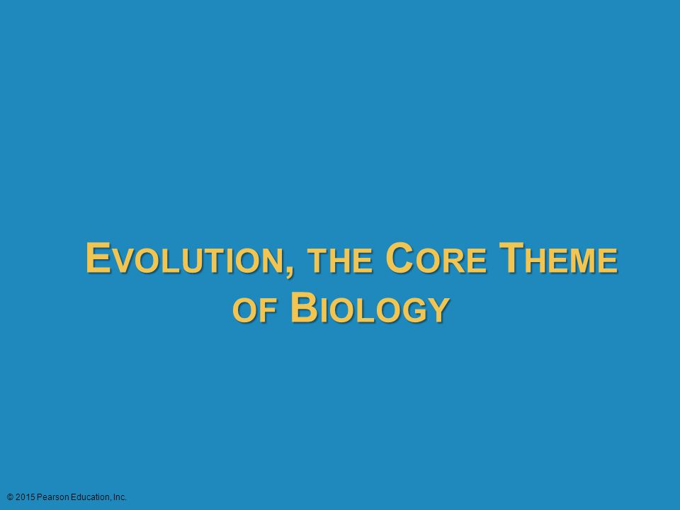 Evolution, the Core Theme of Biology