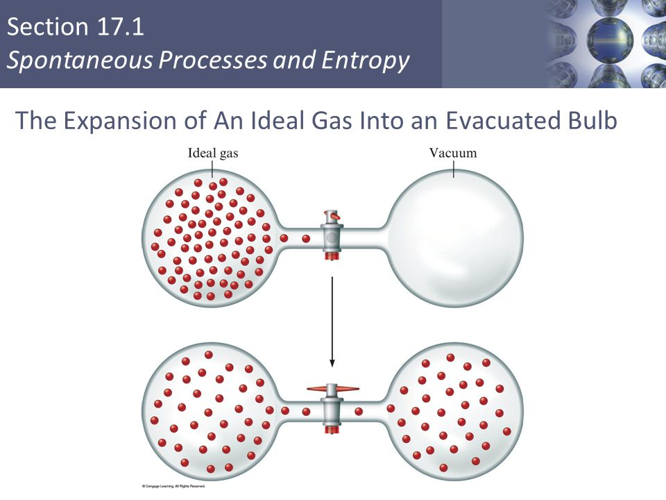 The Expansion of An Ideal Gas Into an Evacuated Bulb