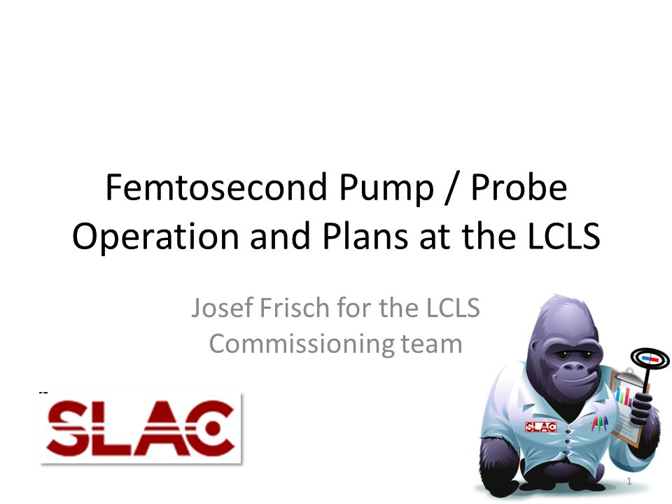 Femtosecond Pump / Probe Operation and Plans at the LCLS