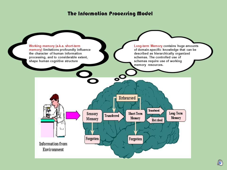 The Information Processing Model