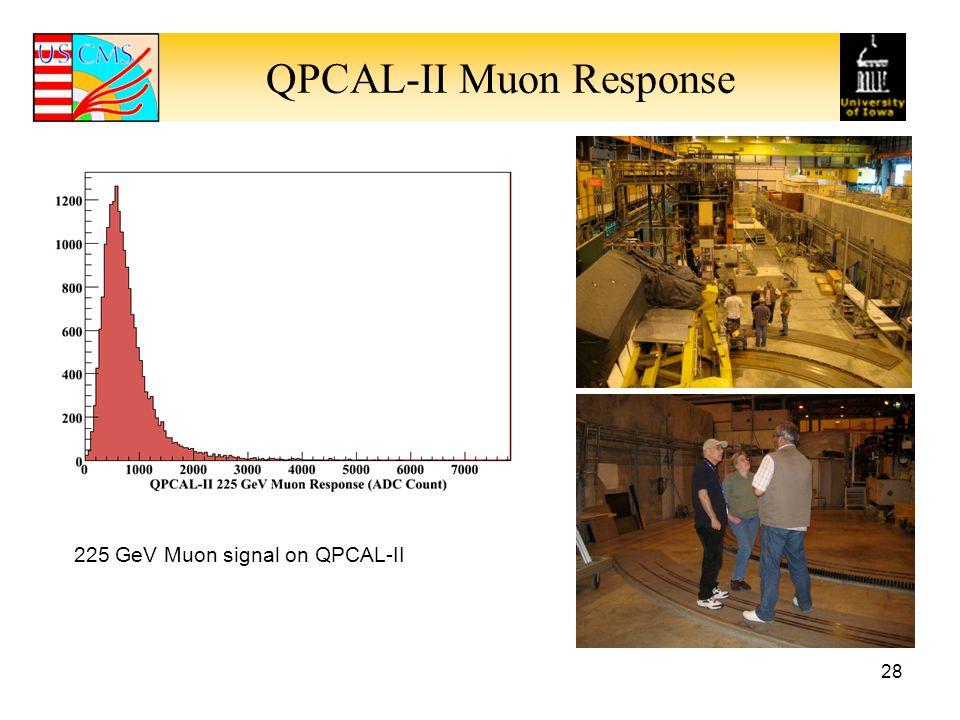 QPCAL-II Muon Response