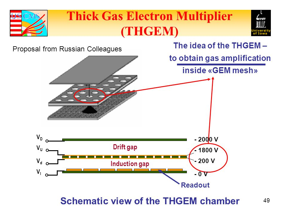 Thick Gas Electron Multiplier (THGEM)