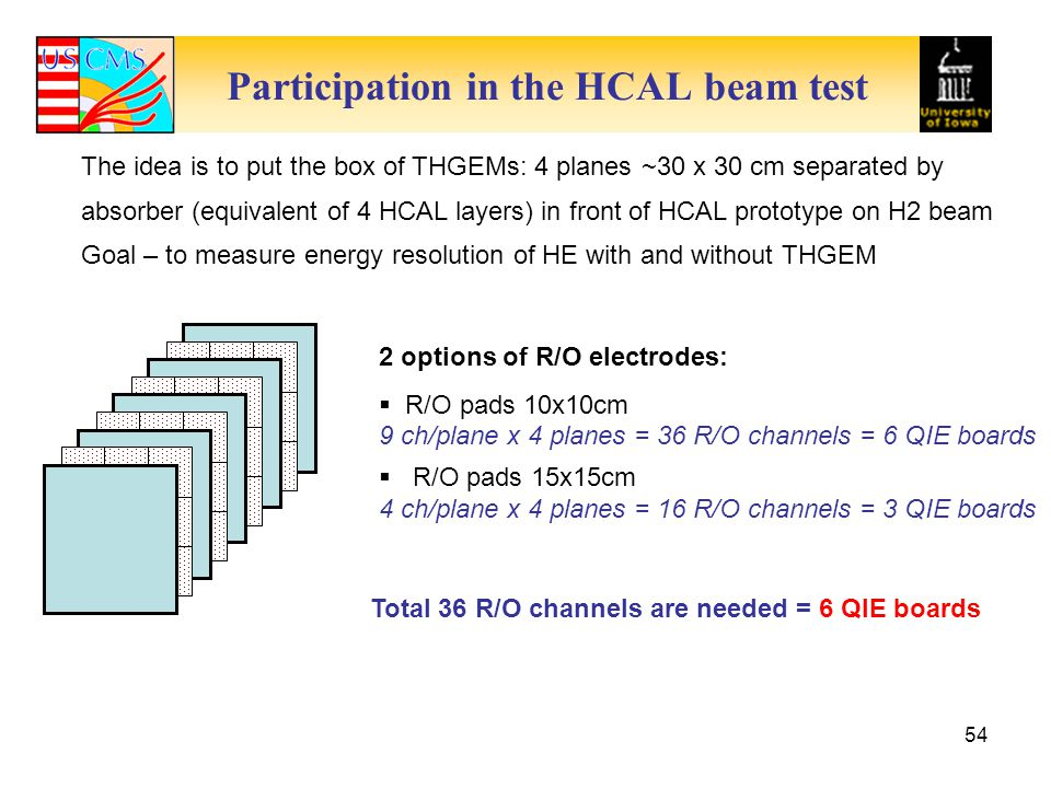 Participation in the HCAL beam test