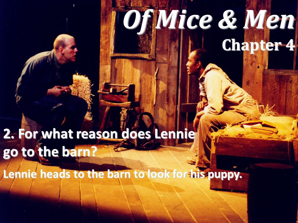 Of Mice & Men Chapter 4 2. For what reason does Lennie go to the barn