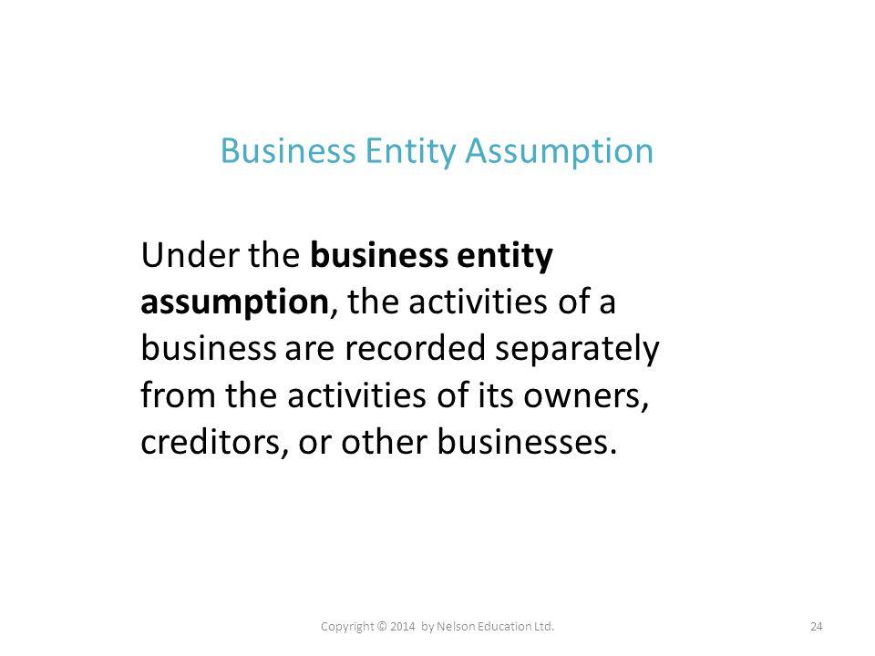 Business Entity Assumption