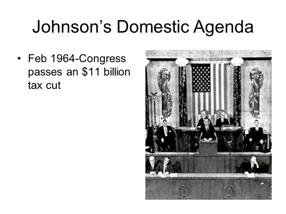 Johnson's Domestic Agenda