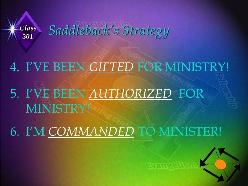 Saddleback's Strategy