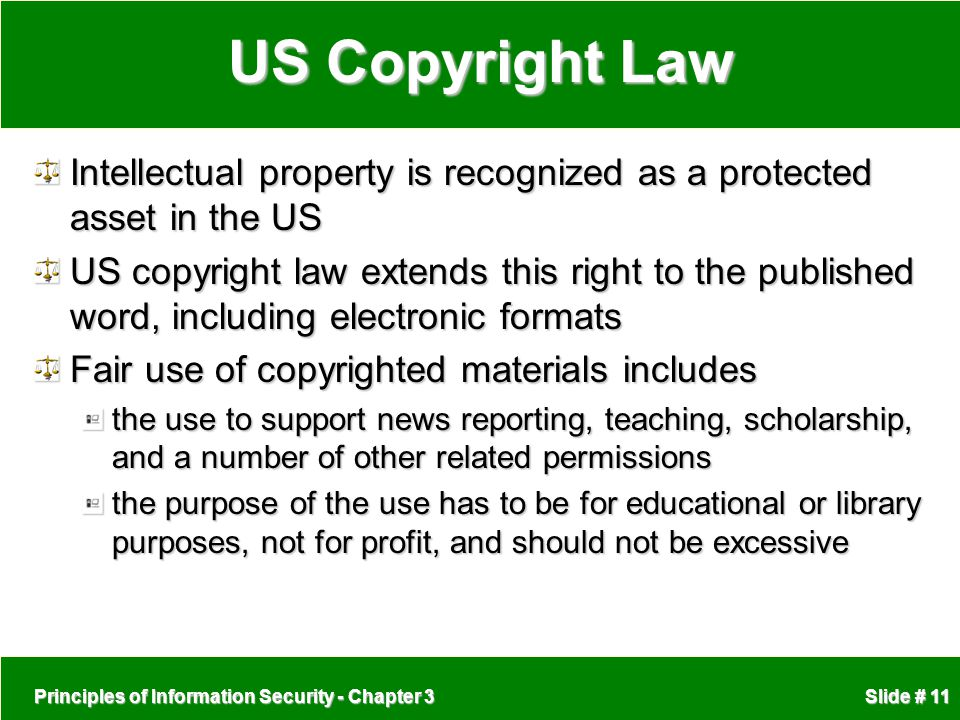 US Copyright Law Intellectual property is recognized as a protected asset in the US.